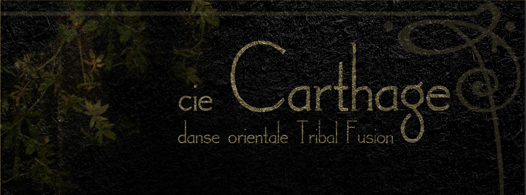 Cie Carthage - bannière