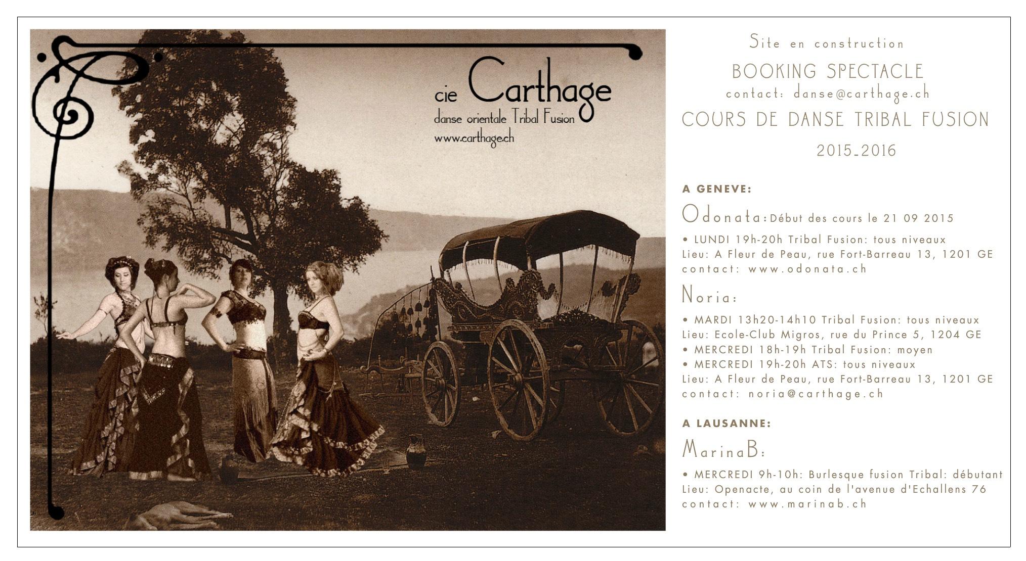 Cie Carthage - site web
